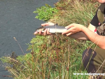 Trout and Seatrout Fishing