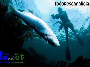 Spearfishing training – Chapter 1 – Before Starting