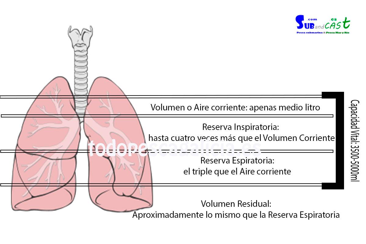 Capacidad-de-pulmones