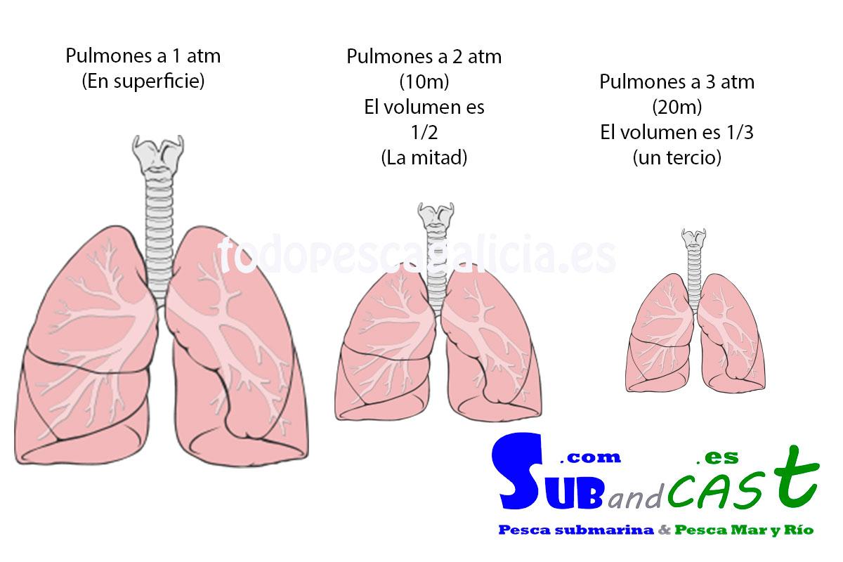 Pulmones-y-presión