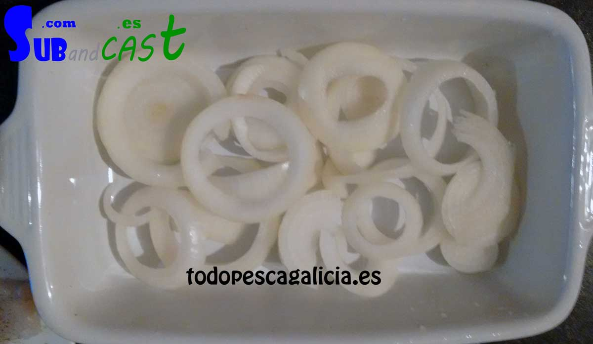 2-cebolla