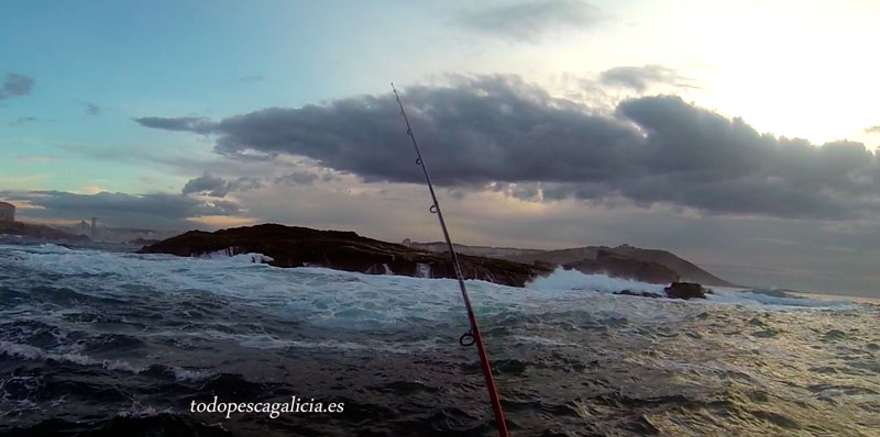 pescando con vinilos