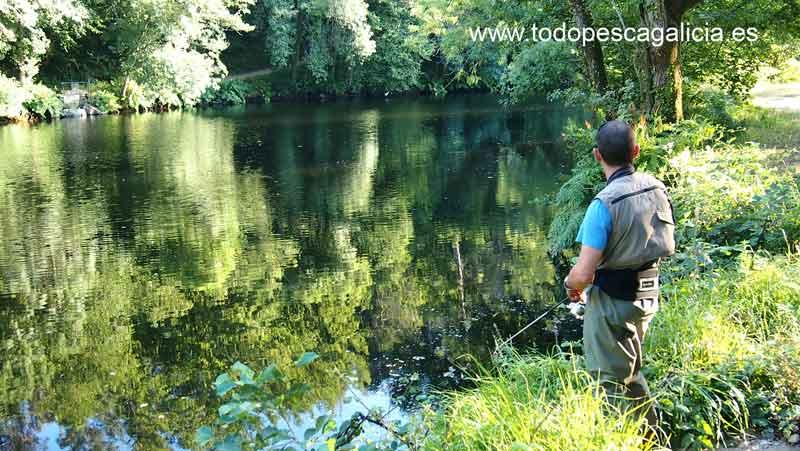 Zona de pesca de Río Coto del Mandeo
