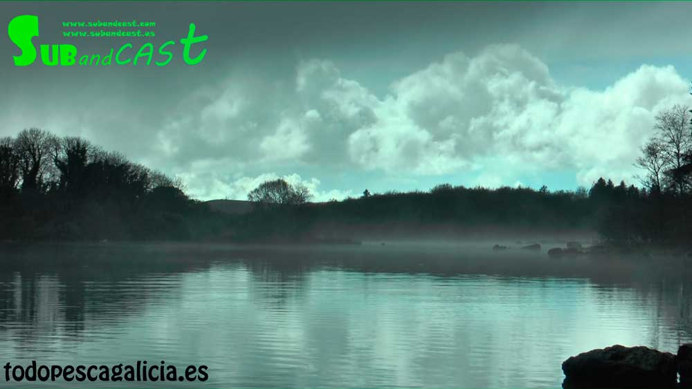 paisaje-con-neblina