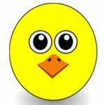 Profile picture of Samu